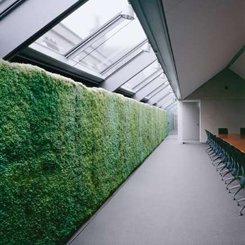 indoorhvbgreenwall